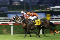 HORSE RACE FINISH Stock Photo