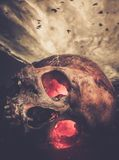 Human skull with glowing eyes Royalty Free Stock Photography