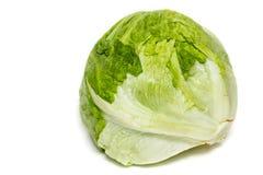 Iceberg Lettuce Stock Photography