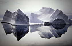 Icebergs Reflected in Still Waters, Antarctica Stock Photos