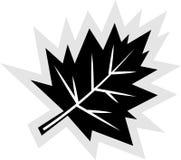 Icono de la hoja de la caída Fotografía de archivo libre de regalías