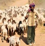 Indische Herder Royalty-vrije Stock Foto's
