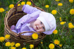Infant girl in basket Stock Photography