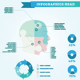 Infographics des Kopfes: der Kopf wird in vier Teile unterteilt Stockbild