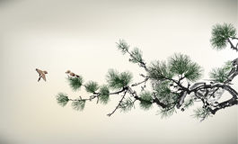 Ink style Pine Tree Royalty Free Stock Photography