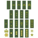 Insignia of the Swedish army Royalty Free Stock Images