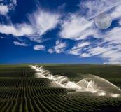 Irrigation on farm Royalty Free Stock Photography