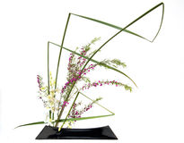 Japanese style flower arrangement ikebana Stock Images