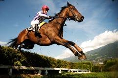 Jockey on horse Royalty Free Stock Image