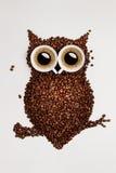 Kaffeuggla. Arkivfoton