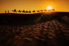 Kamel-Wohnwagen Stockfotografie