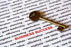 The key of business success Royalty Free Stock Image