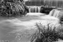 Kleine Wasserfälle im tropischen Wald Stockbild