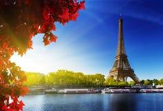 Kleur van de herfst in Parijs Stock Foto