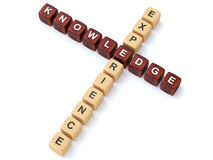 Knowledge experience Royalty Free Stock Photo