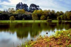 Lake Park HDR Royalty Free Stock Photo