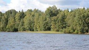 Lake shore. stock footage