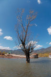 Lashi Lake Stock Photos