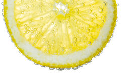 Lemon Slice in Clear Fizzy Water Bubble Background Royalty Free Stock Photography