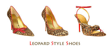 Leopard print shoes Stock Images