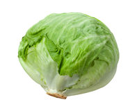 Lettuce Head Isolated on White Stock Photography