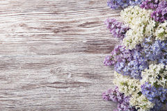 Lilac flowers on wood background, blossom branch on vintage wood Stock Photos