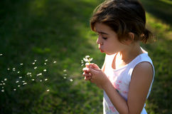Little girl blowing a dandelion and making wish Stock Photo