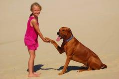 Little girl shaking dog paw Stock Photo