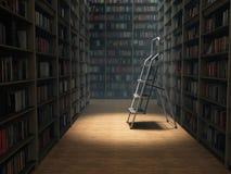 Livros na biblioteca Fotografia de Stock Royalty Free