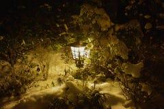 Ljus i snö på natten Arkivfoto