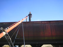 Loading wheat into railcar Royalty Free Stock Photo