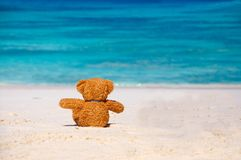 Loneliness Teddy Bear sitting on the beach. Royalty Free Stock Images