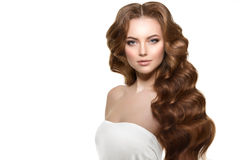 Long hair. Waves Curls Hairstyle. Hair Salon. Updo. Fashion mode Royalty Free Stock Photography