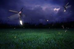 Lucciole alla notte Fotografie Stock Libere da Diritti