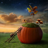 Lumaca-Astronomo Immagini Stock