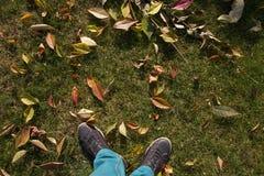 Männliche Füße in den Gummiüberschuhen, die auf dem gelben Fallen stehen, verlässt im Herbstpark Getrennt auf Weiß Stockbilder