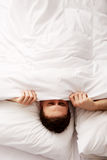 Man hiding in bed under sheets. Stock Images