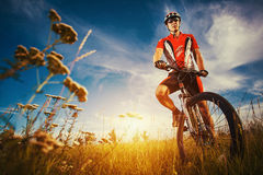 Man is riding bicycle outside in the field Royalty Free Stock Image