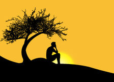 Man sitting alone under a tree on a mountain at sunset Royalty Free Stock Images