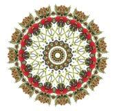 Mandala van de framboos Royalty-vrije Stock Foto's