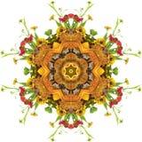 Mandala van de herfst Stock Afbeelding