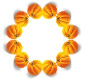Mandala van de pompoen Royalty-vrije Stock Foto's