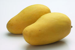 Mangoes Stock Photography