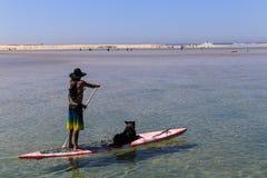 Mann und Hund im Brett, Hafen stephens, Australien Stockfoto