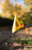 Markör för gul flagga Royaltyfria Bilder