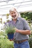Mature Man Choosing Plants At Garden Center Stock Images