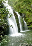 Maui Waterfall Royalty Free Stock Images