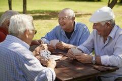 Mayores activos, grupo de naipes de los viejos amigos en el parque Fotos de archivo