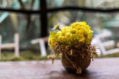 Mazzo del crisantemo Immagini Stock Libere da Diritti