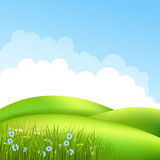 Meadow with grass 2 Royalty Free Stock Photos